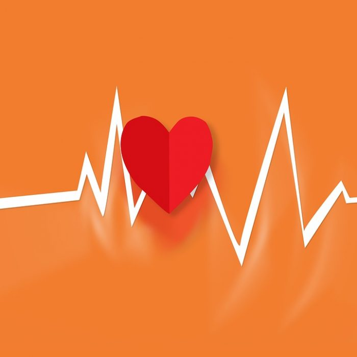 Physical Aspects of The Heart » Accredited Acupuncture of ...